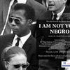 the rai goes to the movies  i am not your negro